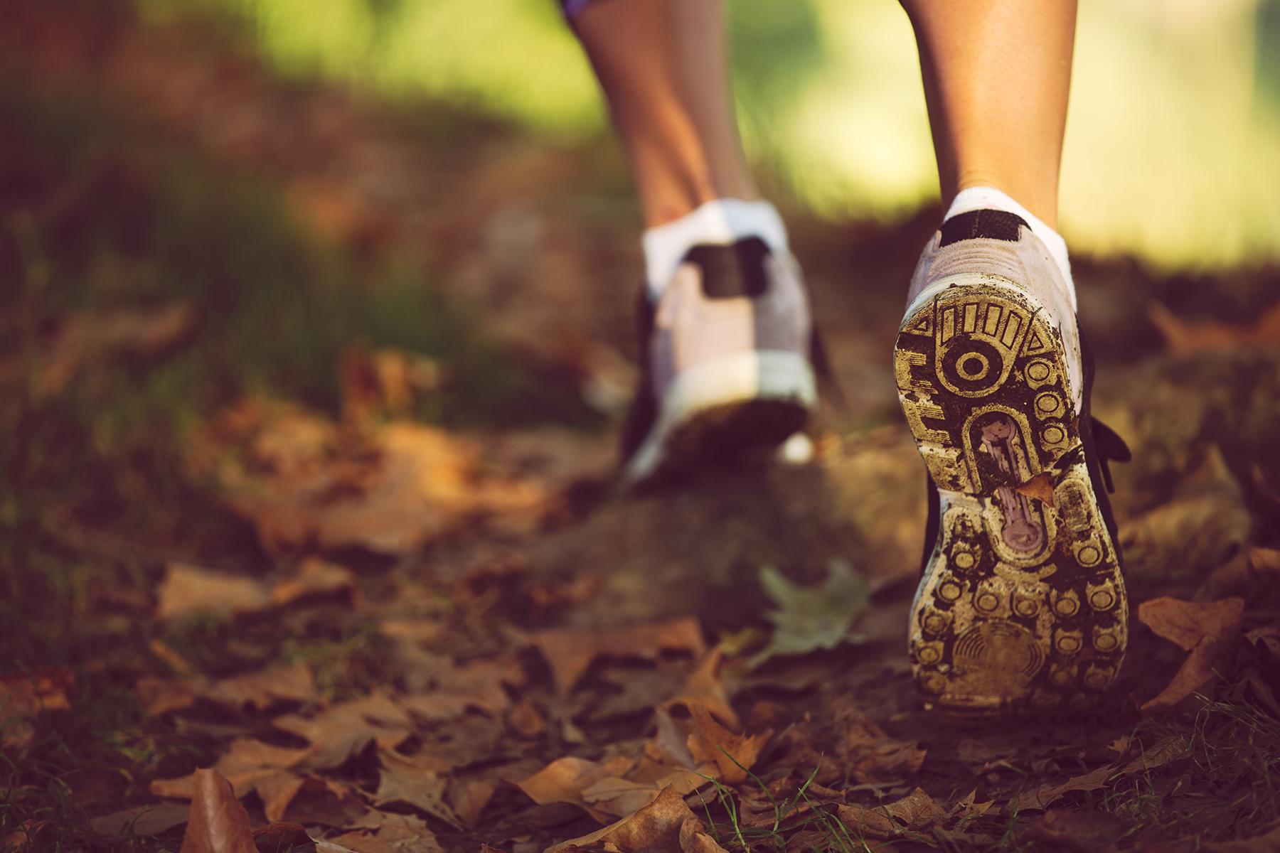 Vandring och löpning